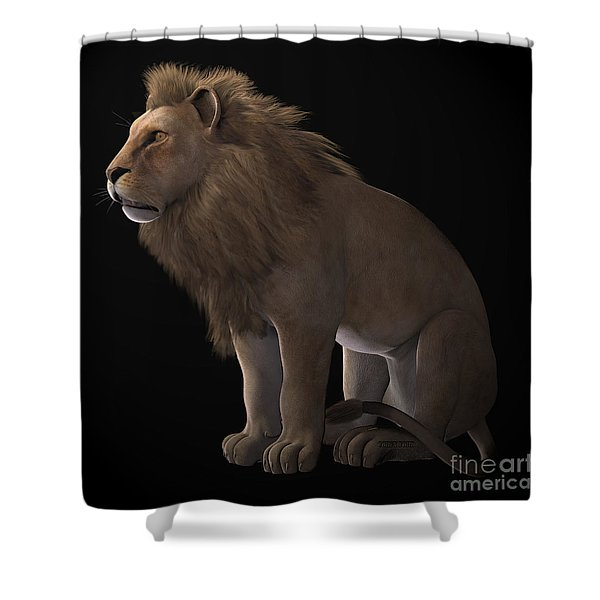 African Lion On Black Shower Curtain