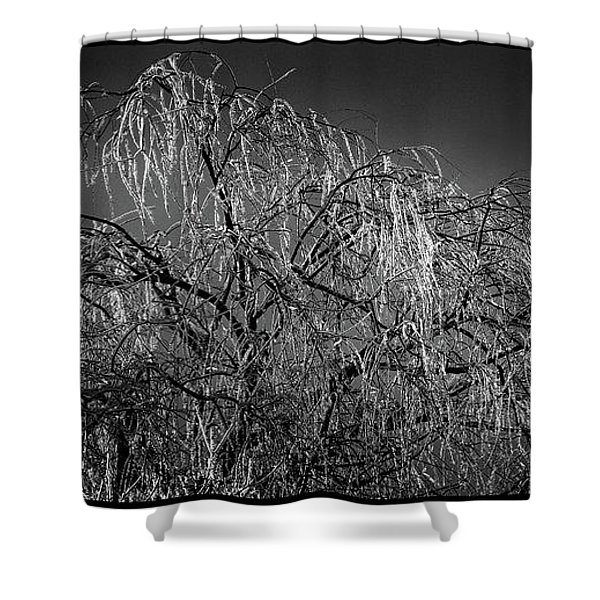 After The Ice Storm Shower Curtain