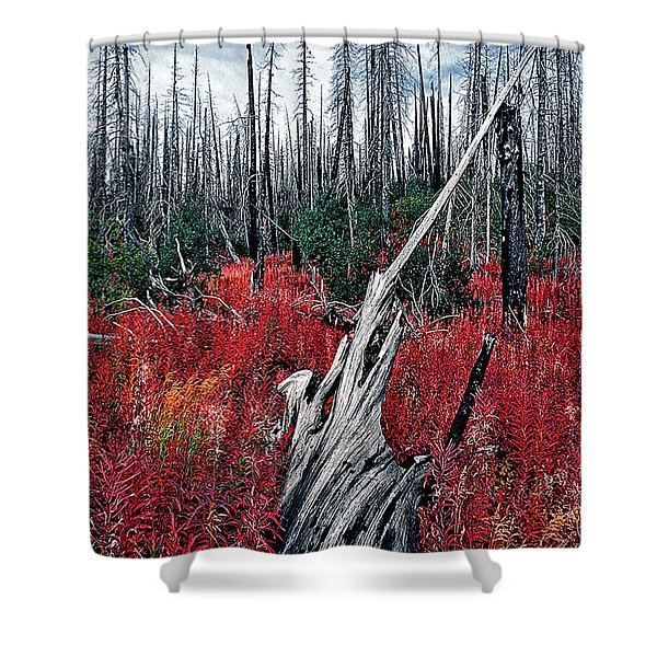Afterburn Shower Curtain