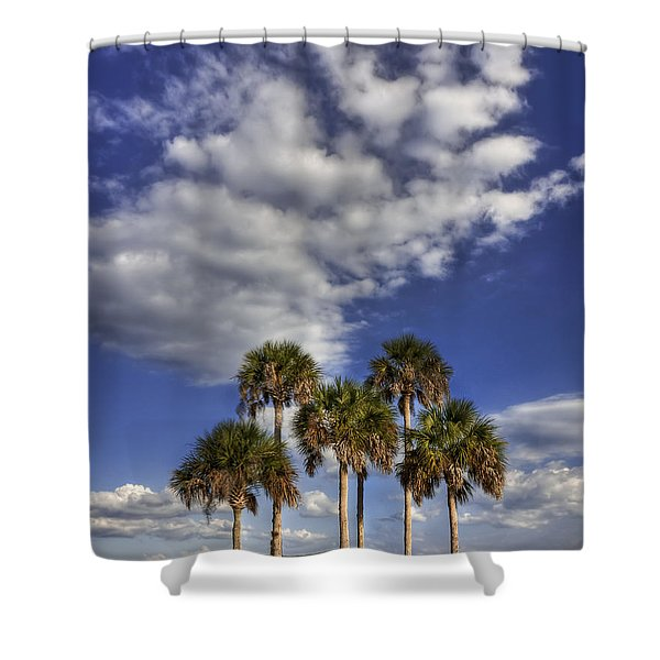 Afternoon High Shower Curtain
