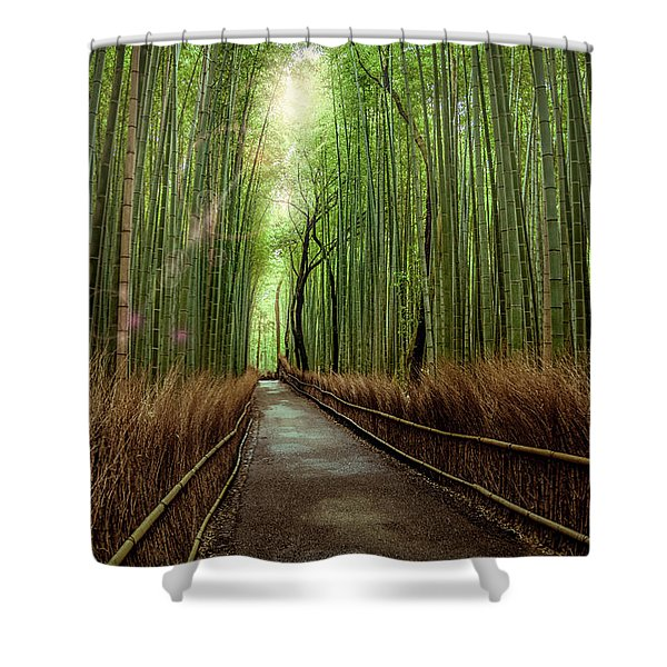 Afternoon In The Bamboo Shower Curtain