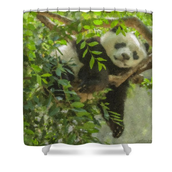 Afternoon Nap Baby Panda Shower Curtain