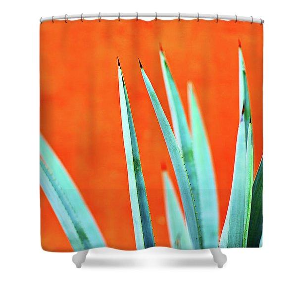 Agave 2 Shower Curtain