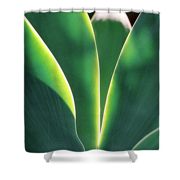Agave Shower Curtain