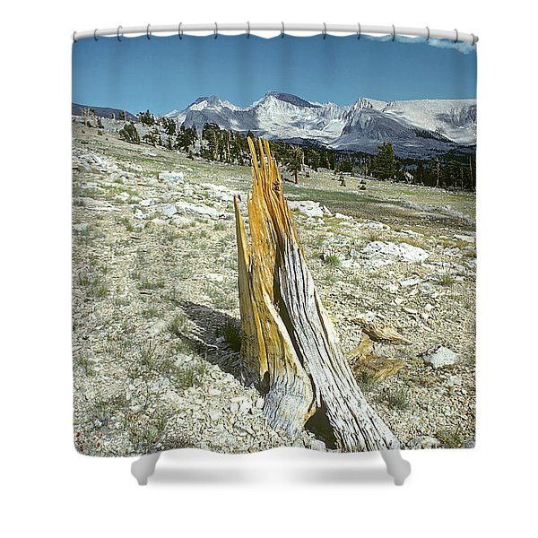 Aged To Perfection Shower Curtain