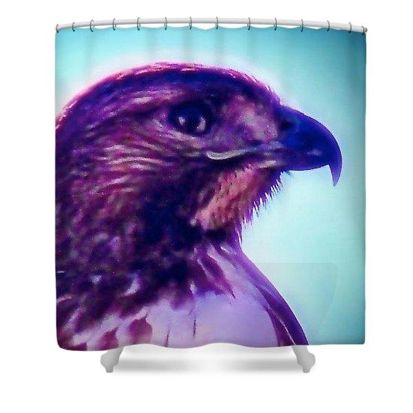 Ak-chin Red-tailed Hawk Portrait Shower Curtain