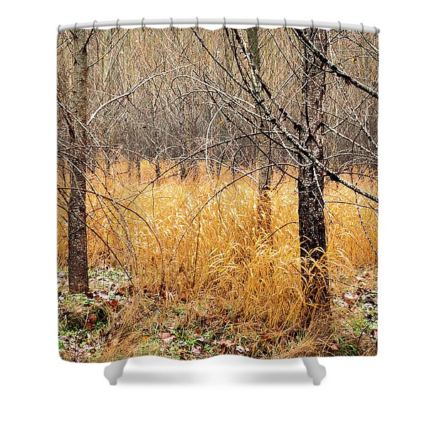 Alder Grove Shower Curtain