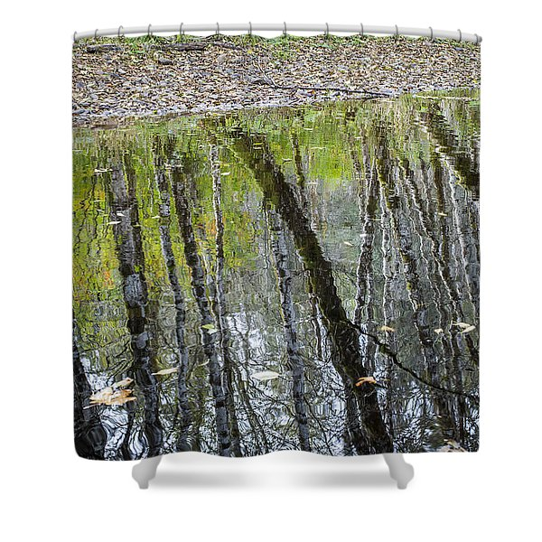 Alder Reflection Shower Curtain