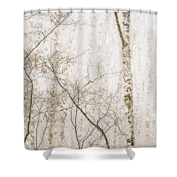 Alders In The Fog Shower Curtain