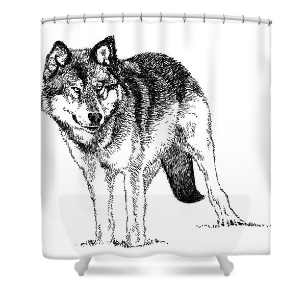 Alert Wolf Shower Curtain