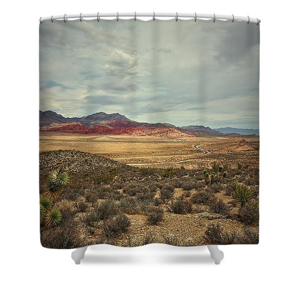 All Day Shower Curtain
