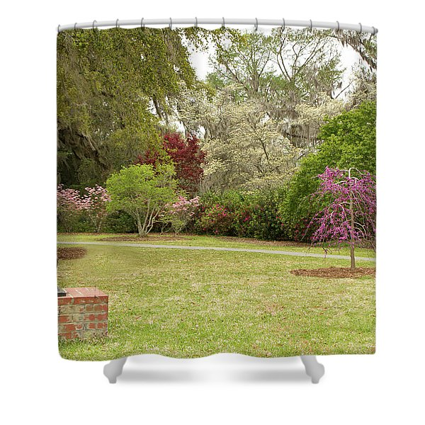 All Kinds Of Dogs Shower Curtain