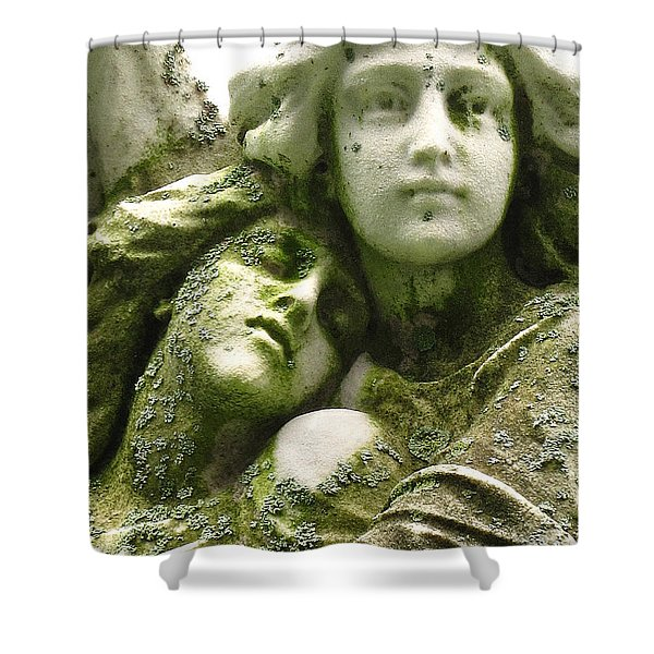 Allegorical Theory Shower Curtain