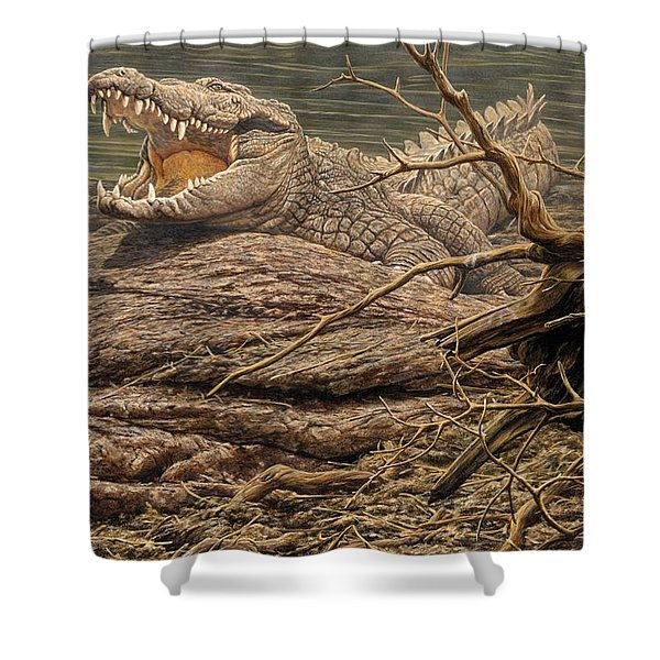 Shower Curtain featuring the painting Alligator by Alan M Hunt