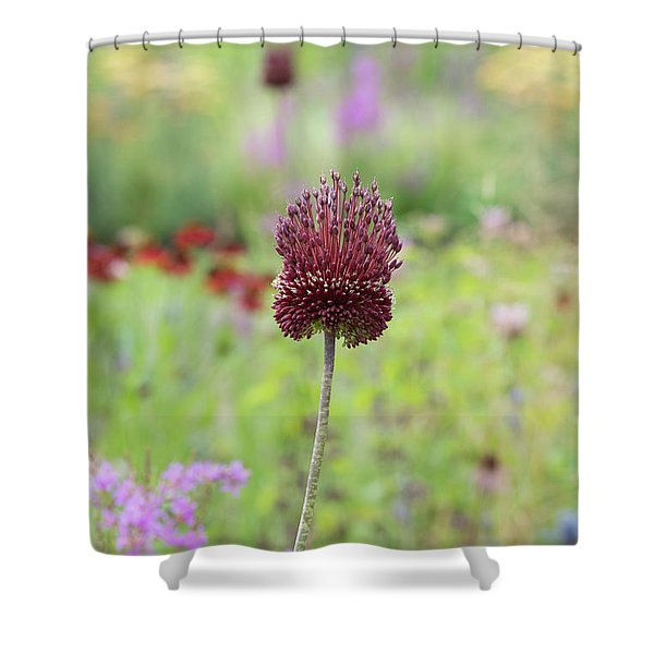 Allium Red Mohican Shower Curtain