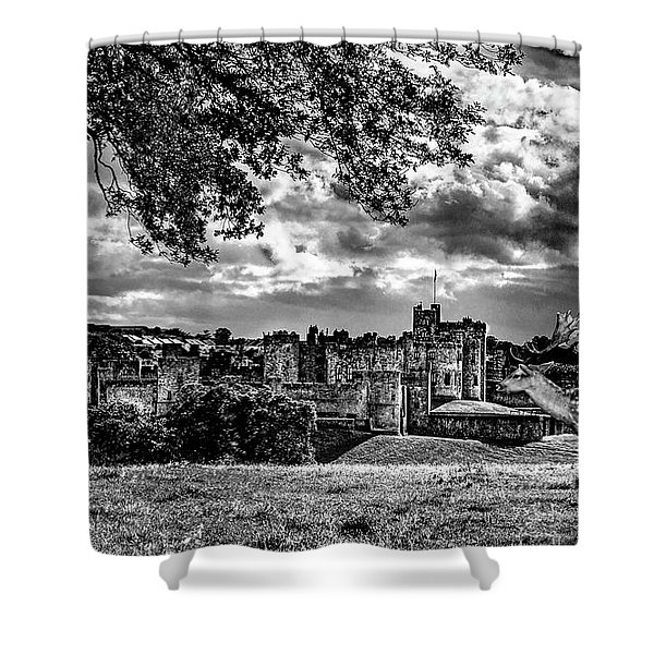 Alnwick Castle And Fallow Deer Shower Curtain