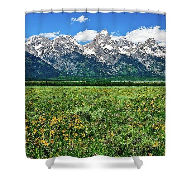Alpine Spring Shower Curtain