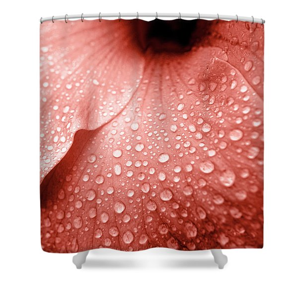 Amber Droplets Shower Curtain