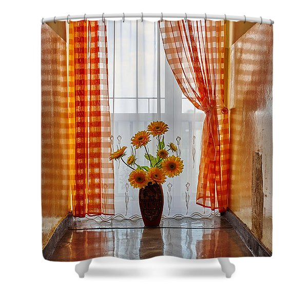 Amber View Shower Curtain