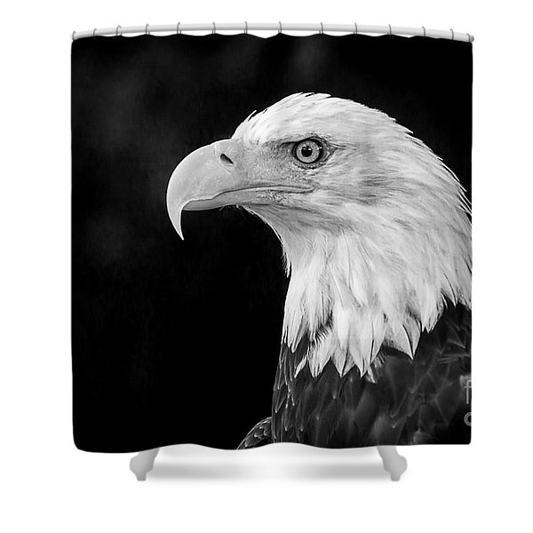 American Bald Eagle Shower Curtain