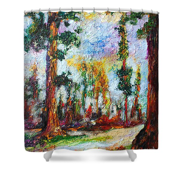 American National Parks Redwood Trees Shower Curtain