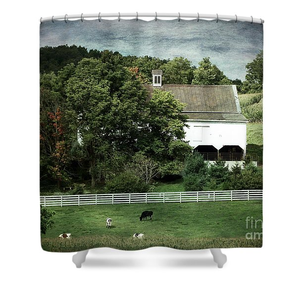 Amish Farm In The Fall With Textures Shower Curtain