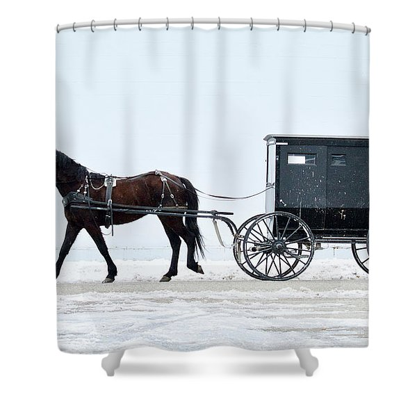 Amish Horse And Buggy 0403 Shower Curtain