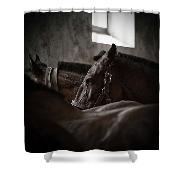 Among Others Shower Curtain