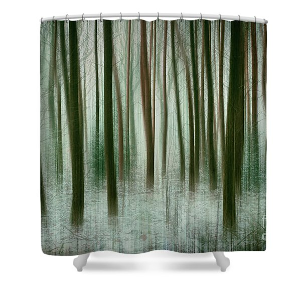 Among The Trees II Shower Curtain