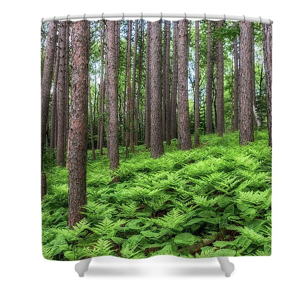 Amongst The Ferns Shower Curtain