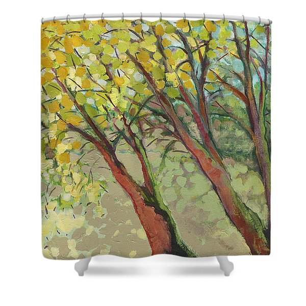 An Afternoon At The Park Shower Curtain