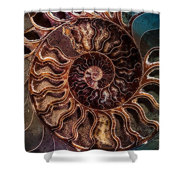 Shower Curtain featuring the photograph An Ancient Shell by Jaroslaw Blaminsky