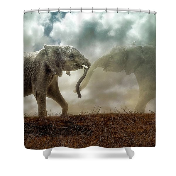 An Elephant Never Forgets Shower Curtain
