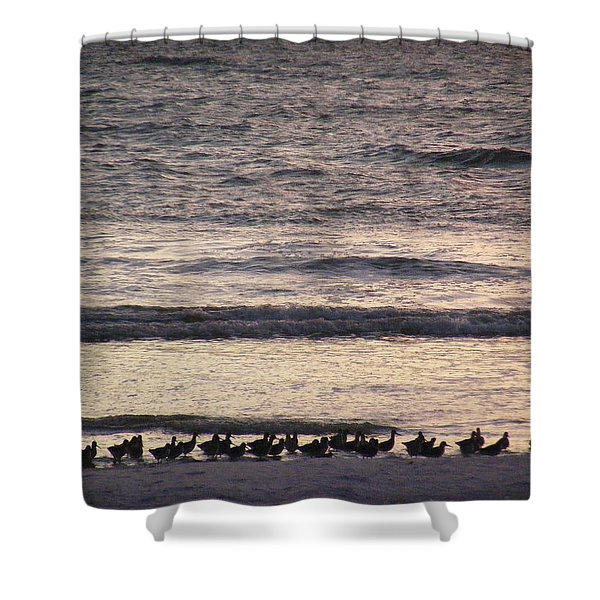 An Evening Stroll Shower Curtain
