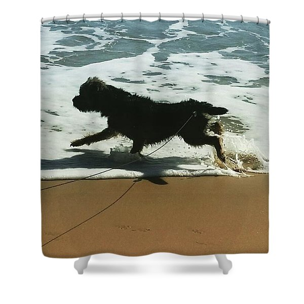 Seaside Frolics Shower Curtain