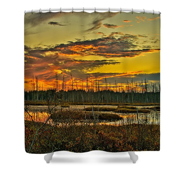 An November Sunset In The Pines Shower Curtain