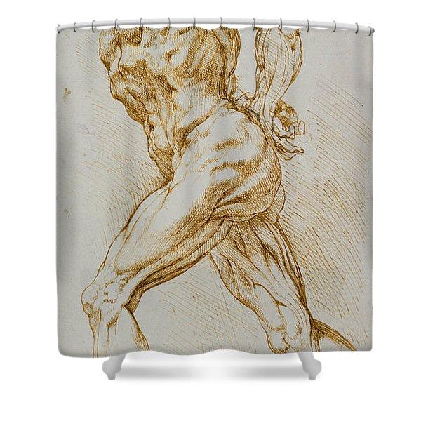Anatomical Study Shower Curtain
