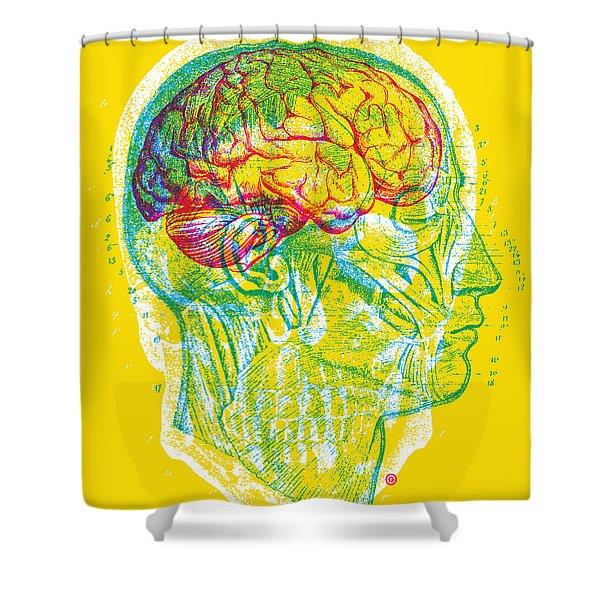 Anatomy Skull Shower Curtain