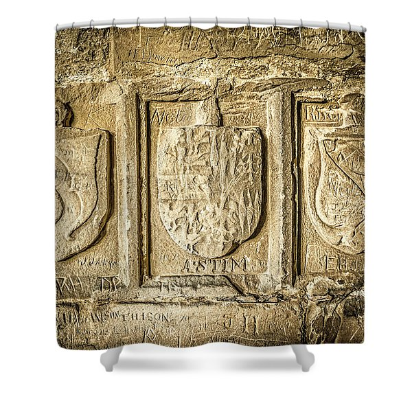 Shower Curtain featuring the photograph Ancient Carvings by Nick Bywater