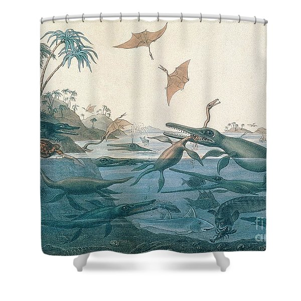 Ancient Dorset Shower Curtain