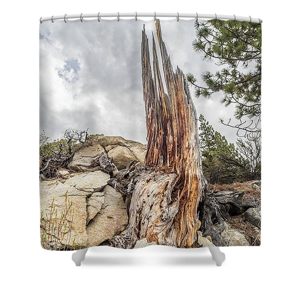 Ancient Relic Shower Curtain