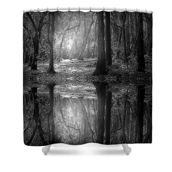 And There Is Light In This Dark Forest Shower Curtain