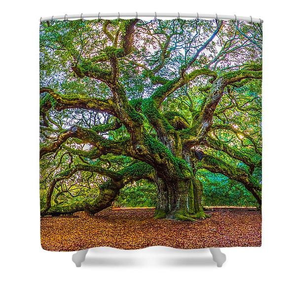 Angel Oak Tree Charleston Sc Shower Curtain