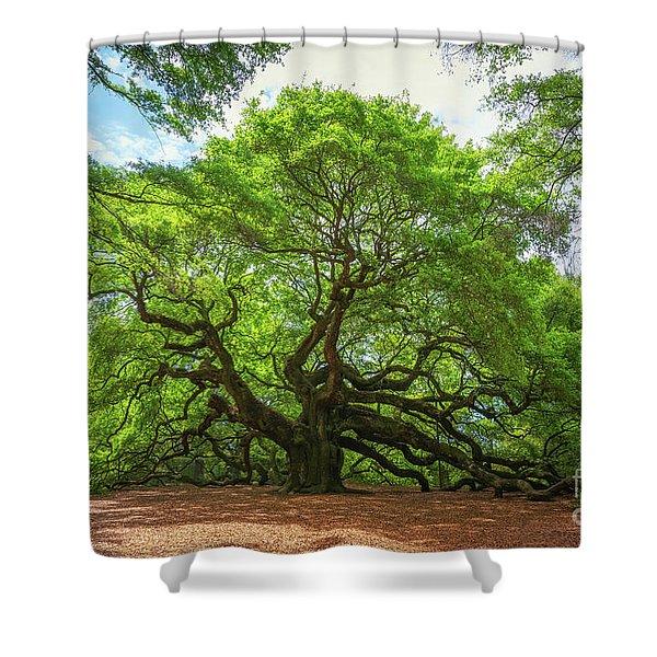 Angel Oak Tree In South Carolina  Shower Curtain