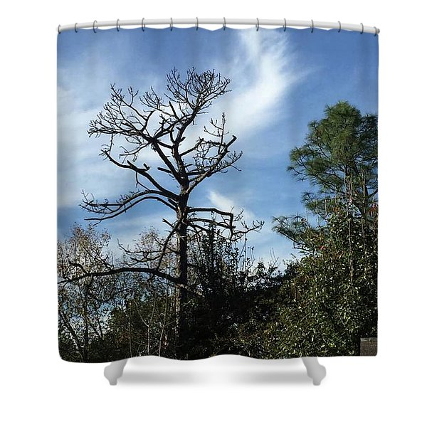 Angel Of Inspiration  Shower Curtain