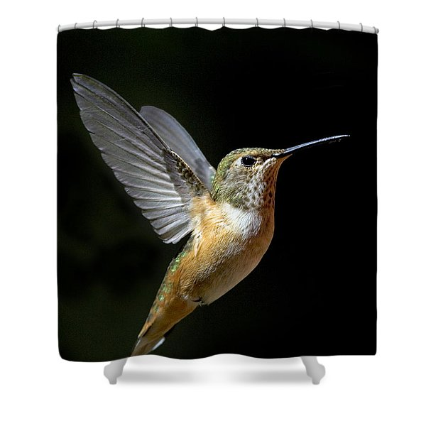 Angelic Hummer Shower Curtain