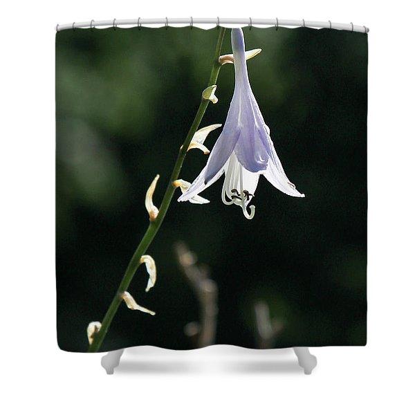 Angel's Fishing Rod Shower Curtain