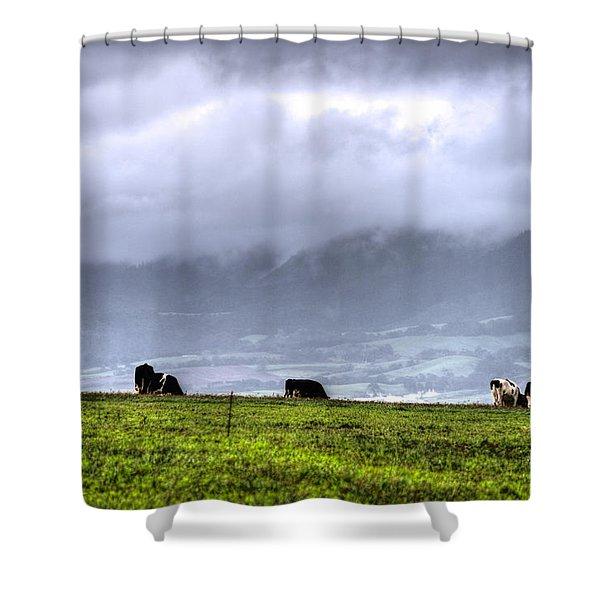 Animals Livestock-03 Shower Curtain