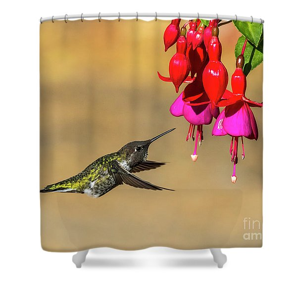 Anna And Hardy Fuchsia Flower Shower Curtain