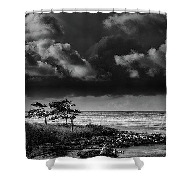 Another Day At Kalaloch Beach Shower Curtain